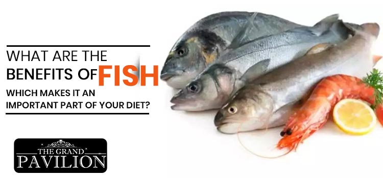 What are the benefits of fish which makes it an important part of your diet